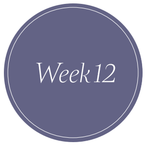 be-powerful-week-12