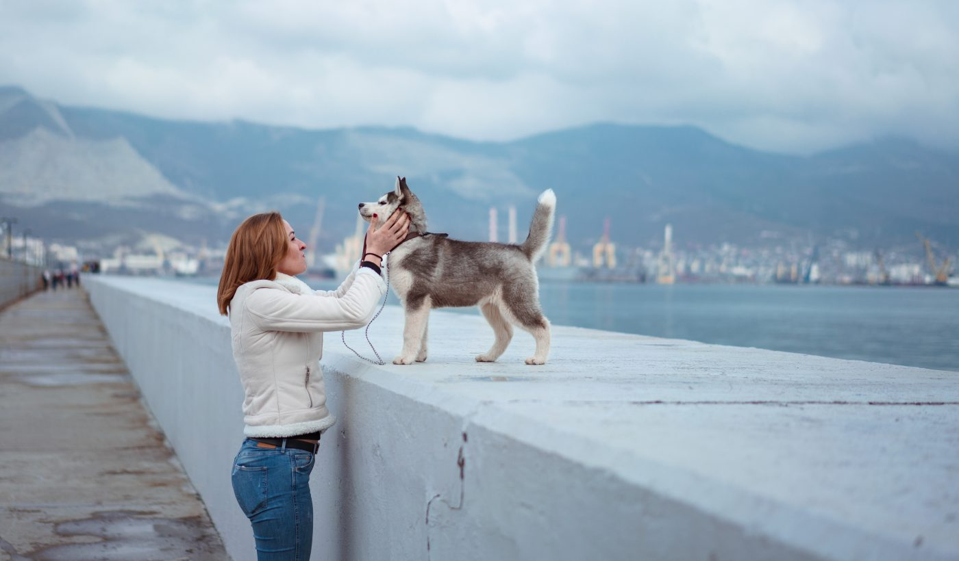 Woman and dog: An unexpected lesson from a husky in creating healthy habits